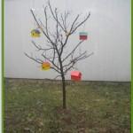 Ekoloska sekcija